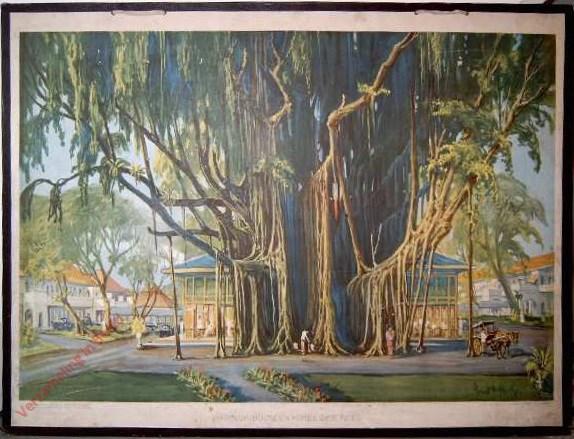1 - Waringinboom en Hotel des Indes