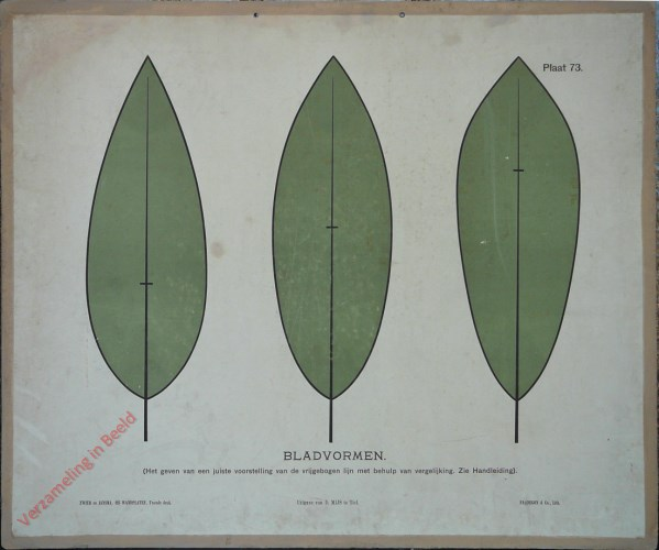 Bladvormen (Het geven van een juiste voorstelling van een vrijgebogen lijn met behulp van een vergelijking. Zie Handleiding)