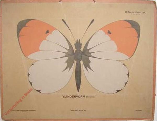 Vlindervorm