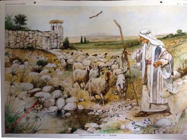 1 - De herder