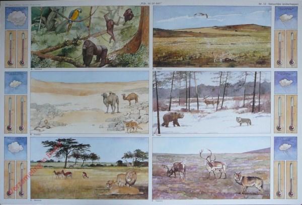 12 - Natuurlijke landschappen
