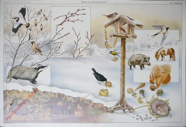 13 - Wintertijd