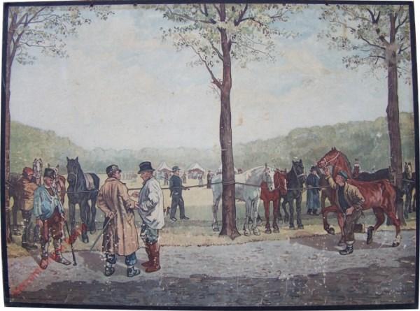 5 - Haagsche paardenmarkt