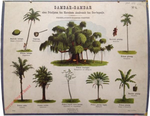 Pohon waringin - Waringinboom met offerfiguren