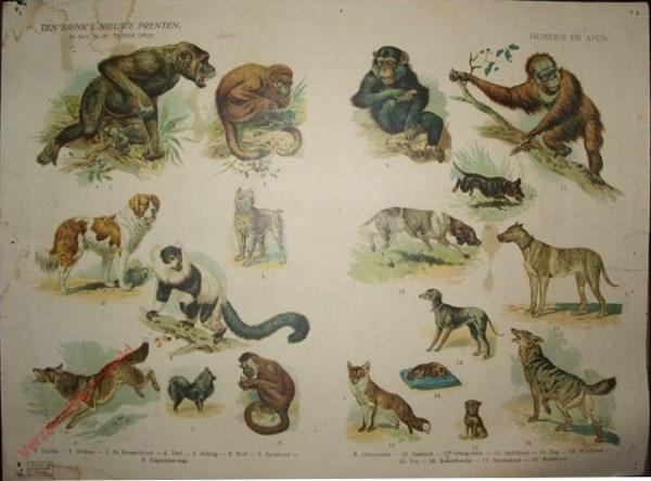 2e serie nr. 39 - Honden en apen