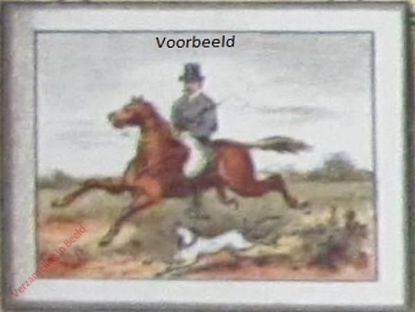 11 - Ruiter te paard met blaffende hond