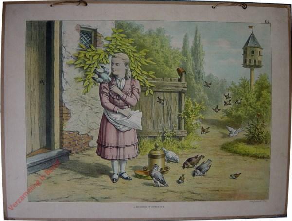 18 - Duiven, gevoederd door een meisje, terwijl musschen er op af komen