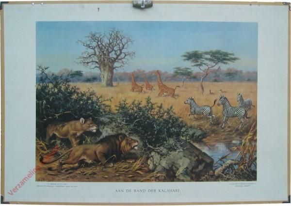5 [var1] - Aan den rand der Kalahari