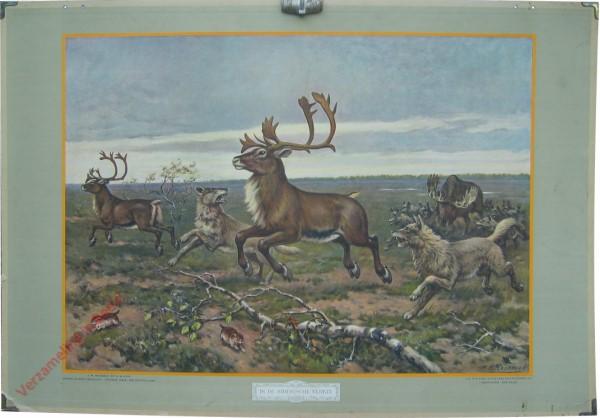 9 - In de Siberische vlakte