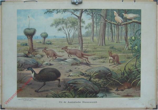 12 - Uit de Australische dierenwereld