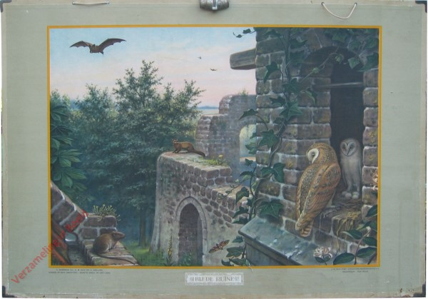 9 [var1] - Bij de ruine