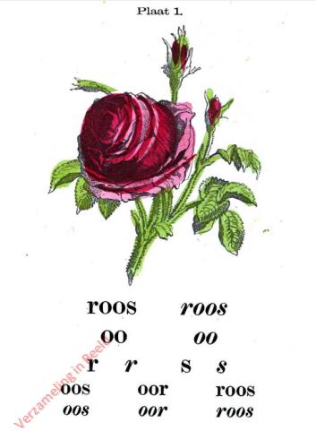 I - roos [1e druk]