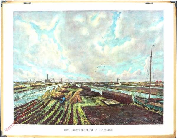 20 - Een laagveengebied in Friesland