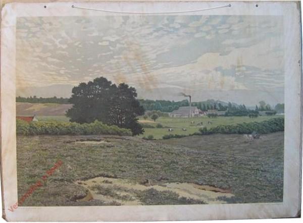 23 [var 1] - Landschap in den Veluwezoom (Heelsum)