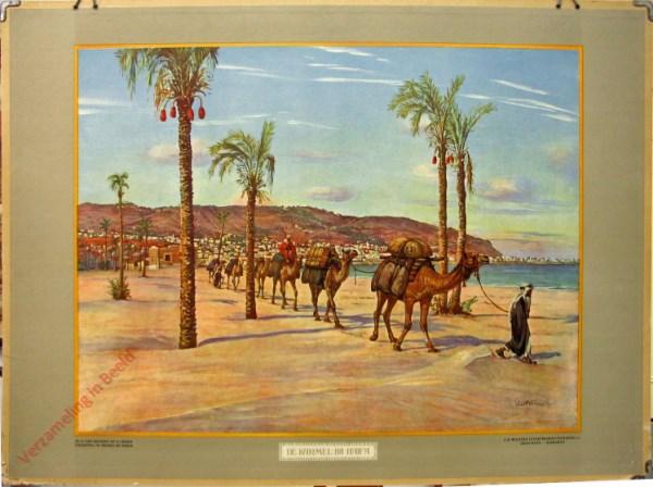 9 - De Karmel bij Haifa