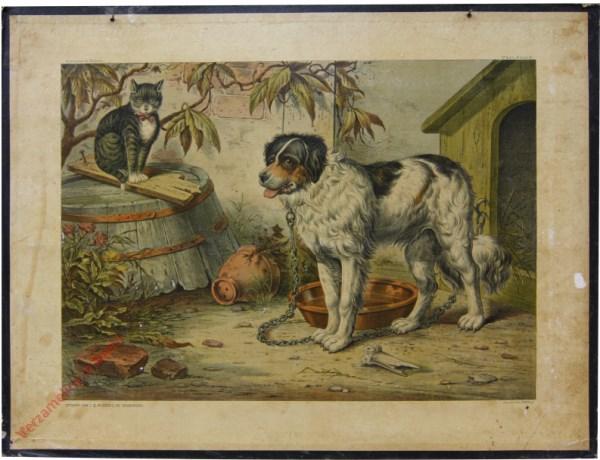 1e serie No. 10 - De Hond en de Kat
