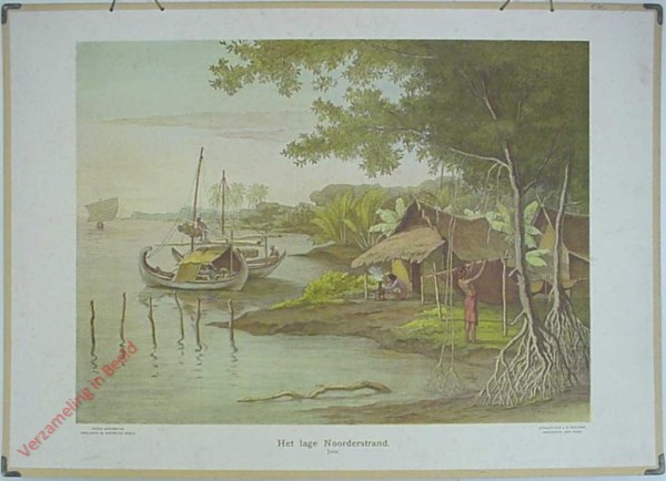 3 - Het lage Noorderstrand. Java