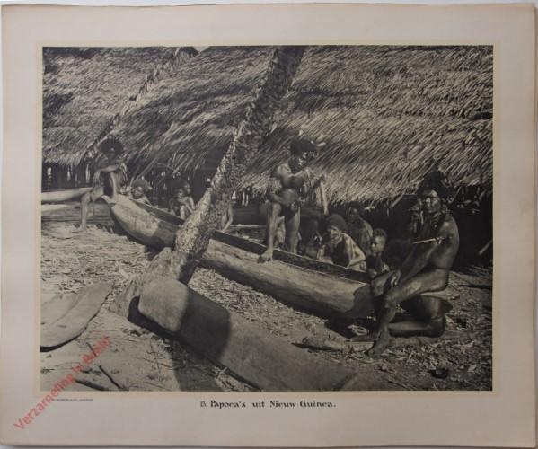 13 - Papoea's uit Nieuw-Guinea.