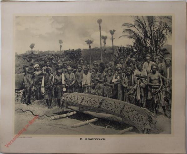 19 - Timoreezen.