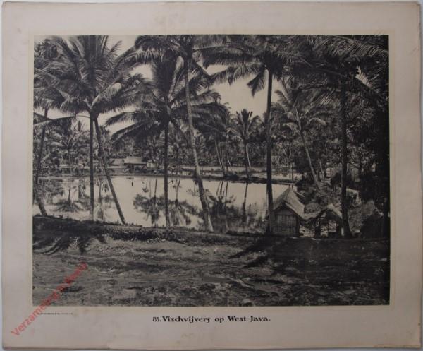 83 - Vischvijvers op West-Java.