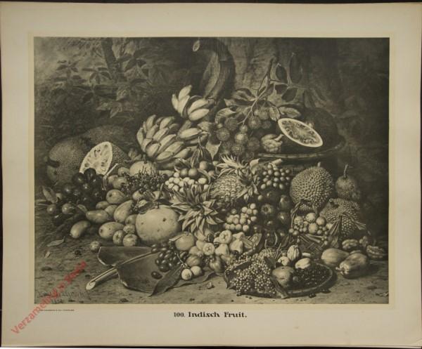 100 - Indisch Fruit