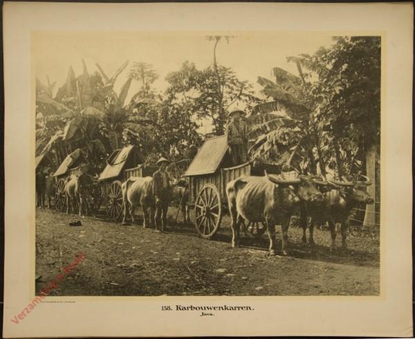 138 - Karbouwenkarren. (Java)