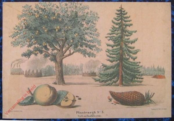 Tweede reeks. No. 5 [1e druk] - Plantenrijk. Ooft en Naaldboom
