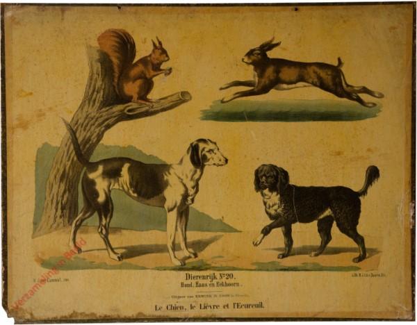Tweede reeks. No. 20 [1e druk] - Dierenrijk. Hond, haas en eekhoorn
