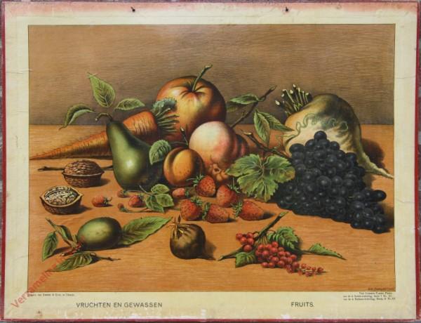 Serie I. No. XI. [var T1] - Vruchten en gewassen. Fruits