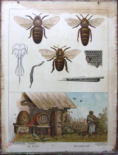 Serie II. No. VI. [var T1] - De bijen. Les abeilles [schort onderaan licht schuin]