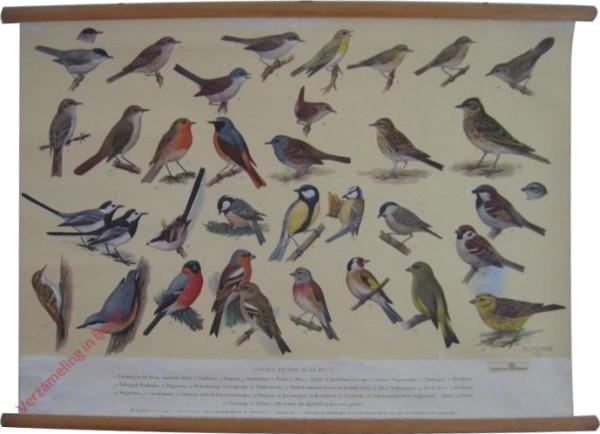 2 - Vogels bij ons Huis [II]