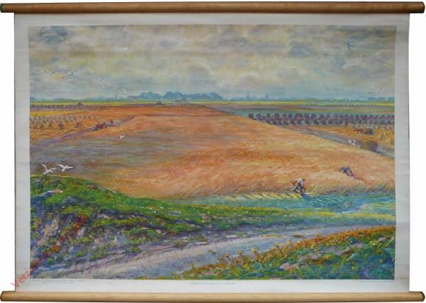 Zevende serie, XXVII - Landbouw aan de Noordkust van Groningen [Johan Dijkstra, kleinere latere versie]