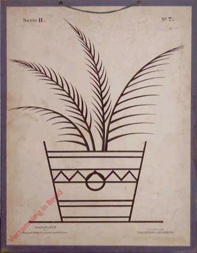 Serie II. No. 7 - Palm in Bak