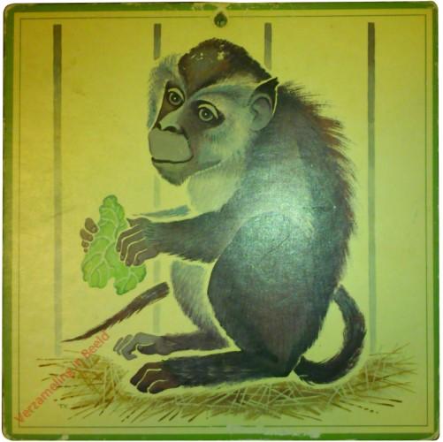De dierentuin - aap