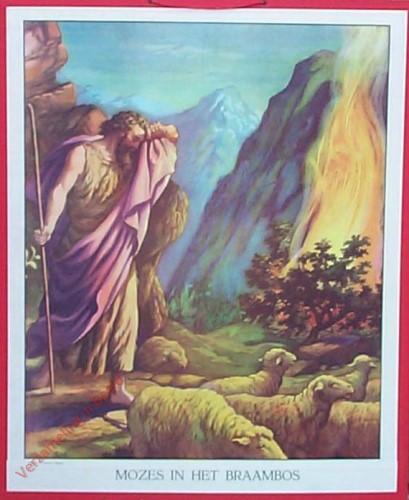 11 - Mozes in het braambos