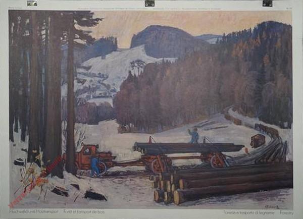 122 - Hochwald und Holztransport